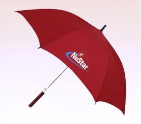 48 Inch Arc Personalized Auto Open Straight Umbrellas