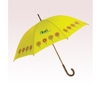 48 Inch Arc Personalized Domestic Fashion Umbrellas