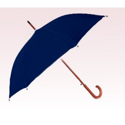 Personalized Navy Blue 48 inch Arc Auto Opening Fashion Umbrellas