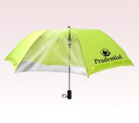 Personalized Green 46 inch Arc Extra Large Auto-Open Safety Folding Umbrella