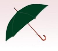 Personalized Hunter Green 48 inch Arc Auto Opening Fashion Umbrellas