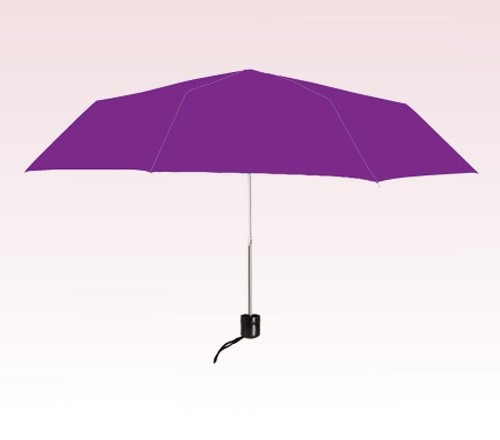 Personalized Purple 41 Arc Econo Folding Umbrellas