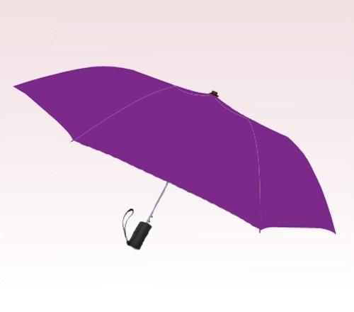 Personalized Purple 42 inch Arc Spectrum Auto- Open Folding Umbrellas
