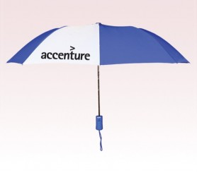 Customized 43 inch Wind Blue Umbrella