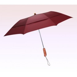 43 Inch Arc Customized Auto Open Folding Umbrellas